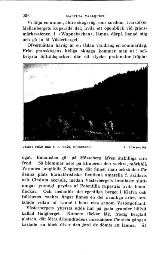 Svenska Turistföreningens årsskrift : 1914 :  236  (1886)